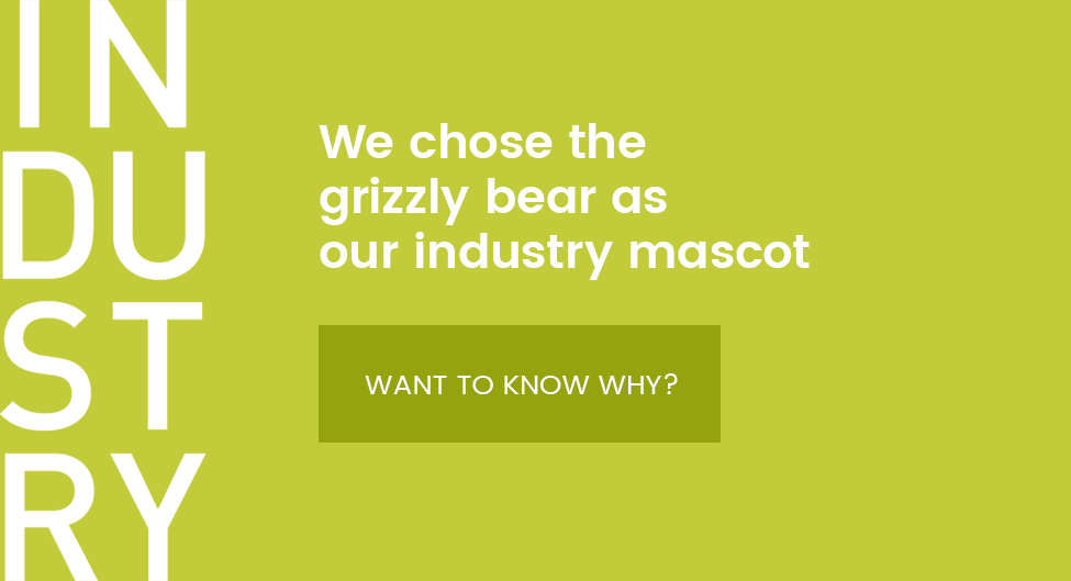 The grizzly bear was chosen as symbol for the rather tough and robust style which characterizes the whole collection.